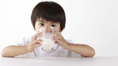 manfaat susu lactogrow 1-3 tahun