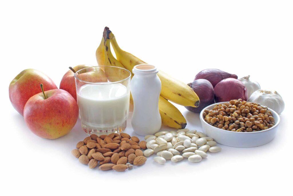manfaat probiotik